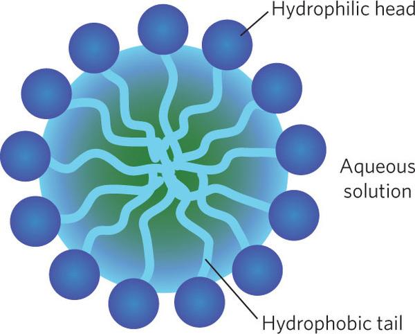 Мицел - главен компонент на мицеларни води