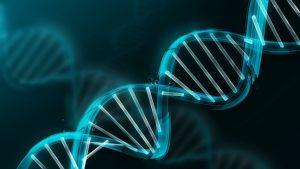 """Молекула ДНК - виждат се ясно """"стъпалцата"""", които UVB уврежда."""